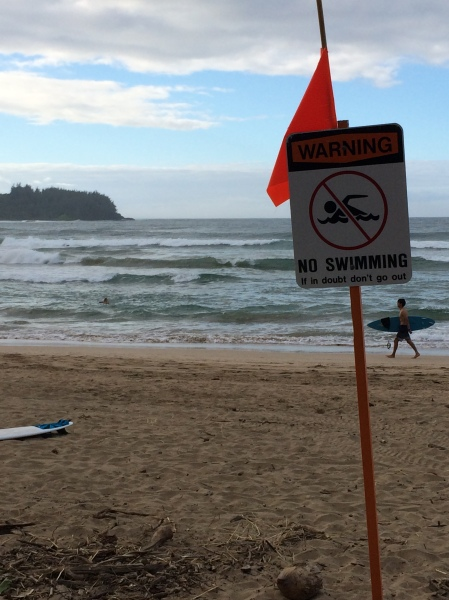 """No swimming. This does not include surfing"""