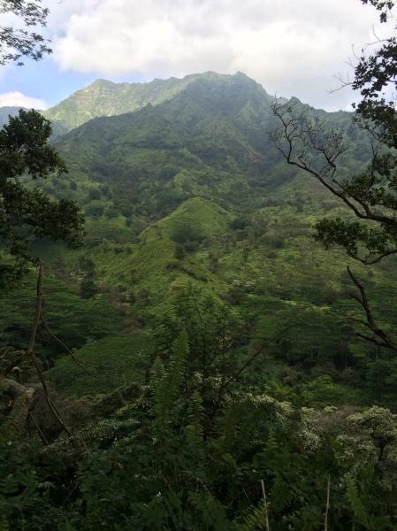 Kuilau Ridge Hike