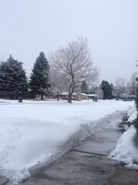 All shoveled out, Jan 17, 2016
