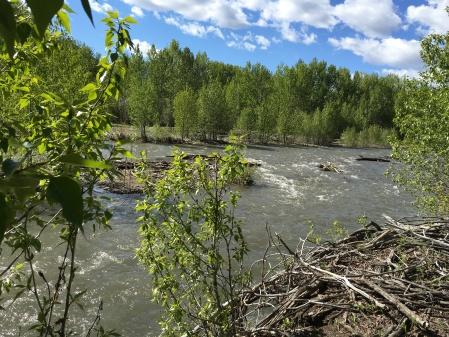 the Big Wood River